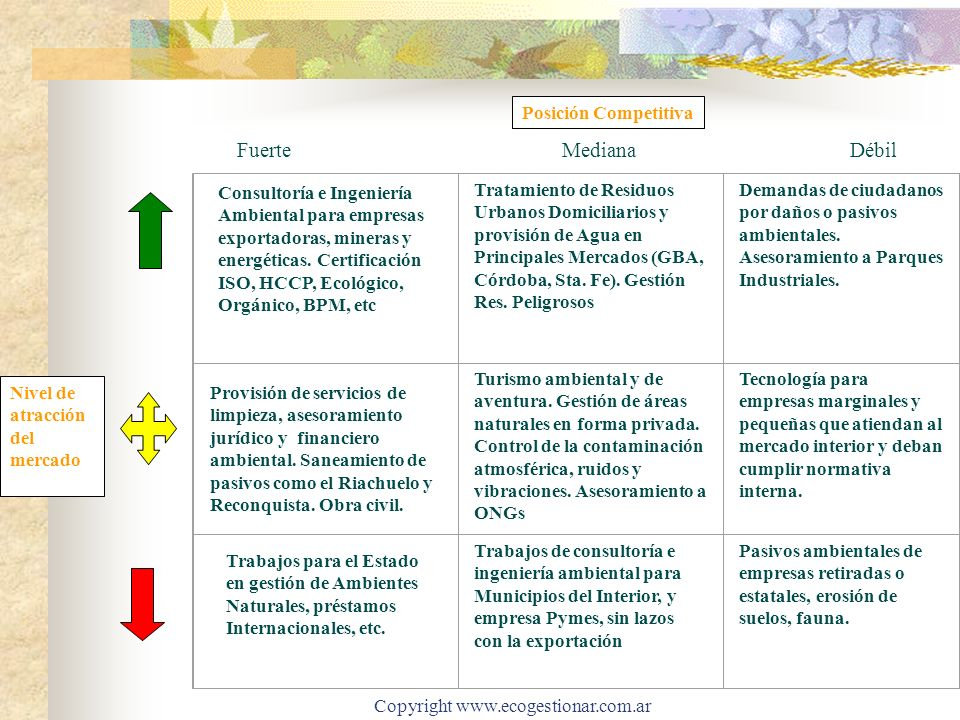 Copyright www.ecogestionar.com.ar Nivel de atracción del mercado FuerteMediana Débil Consultoría e Ingeniería Ambiental para empresas exportadoras, mi
