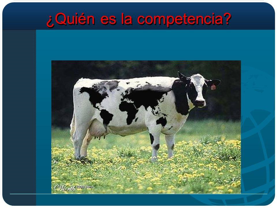 ¿Quién es la competencia?