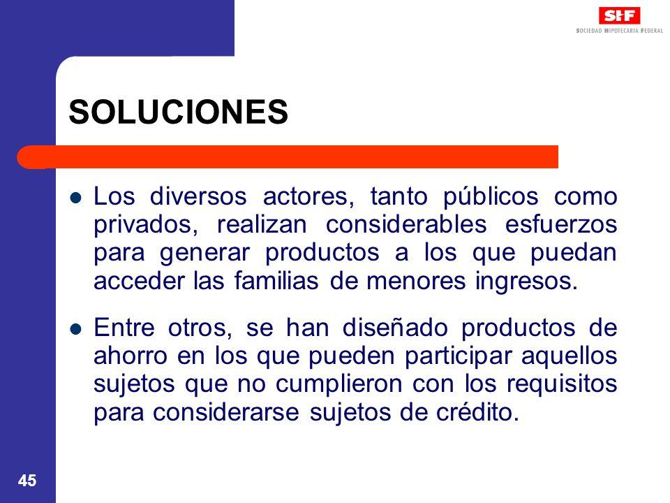 45 SOLUCIONES Los diversos actores, tanto públicos como privados, realizan considerables esfuerzos para generar productos a los que puedan acceder las