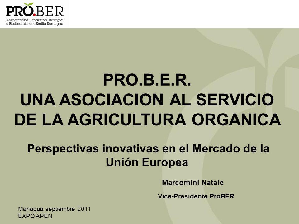 Managua, septiembre 2011 EXPO APEN PRO.B.E.R. UNA ASOCIACION AL SERVICIO DE LA AGRICULTURA ORGANICA Perspectivas inovativas en el Mercado de la Unión