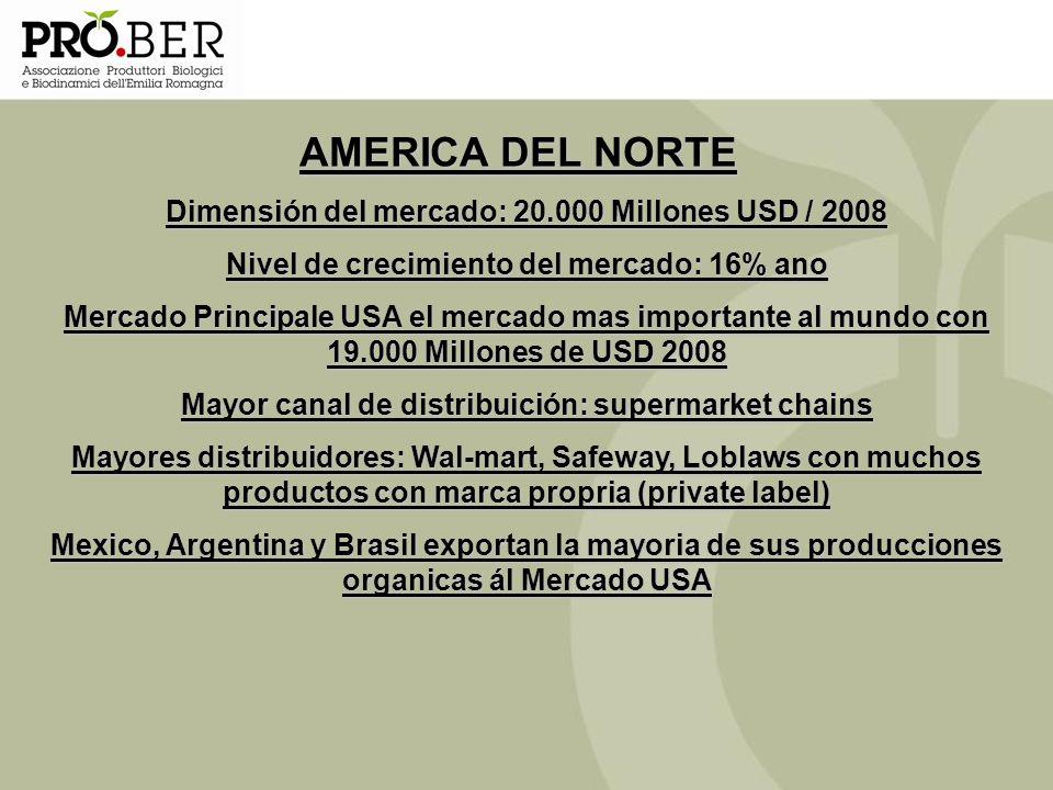 AMERICA DEL NORTE Dimensión del mercado: 20.000 Millones USD / 2008 Nivel de crecimiento del mercado: 16% ano Mercado Principale USA el mercado mas im
