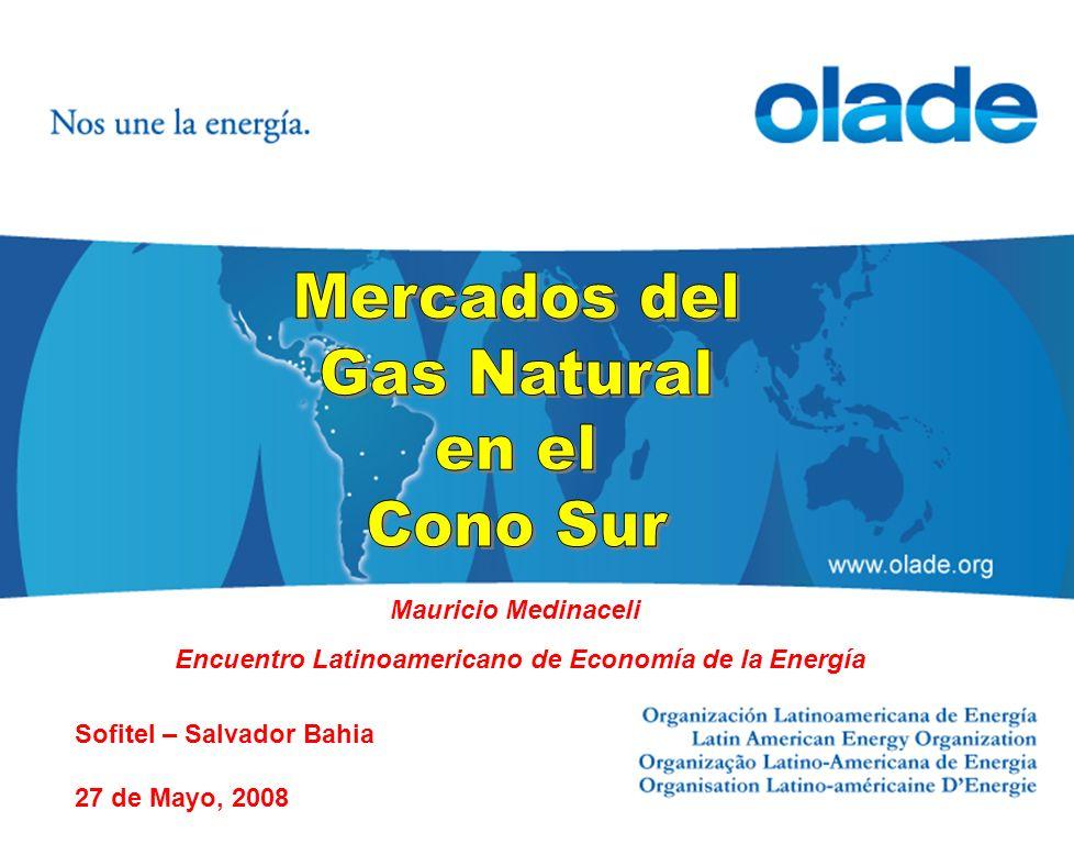 Mauricio Medinaceli Encuentro Latinoamericano de Economía de la Energía Sofitel – Salvador Bahia 27 de Mayo, 2008