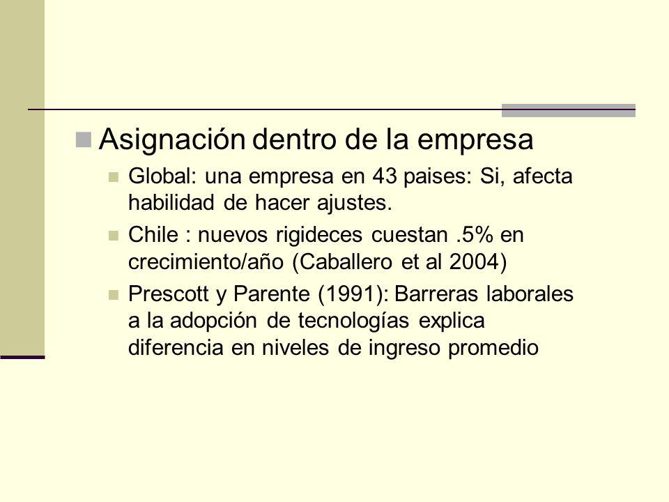 Asignación dentro de la empresa Global: una empresa en 43 paises: Si, afecta habilidad de hacer ajustes.