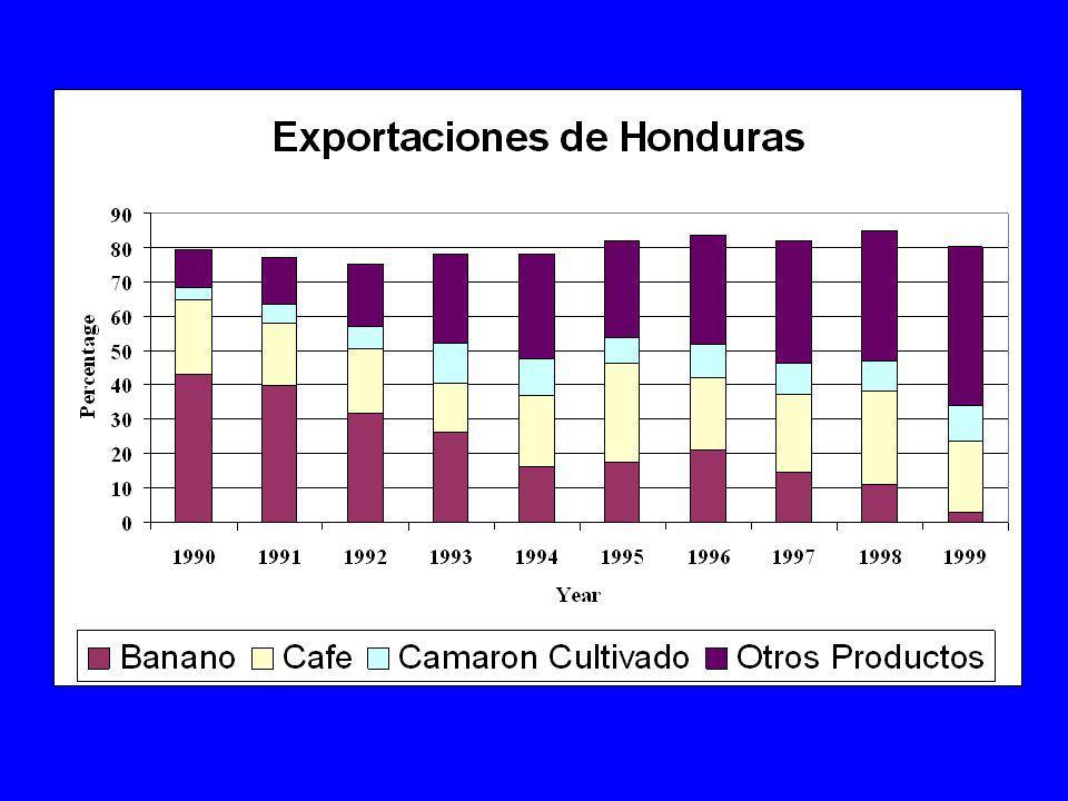 Diferencias entre Pa ses Desarrollados y en vías de Desarrollo Estructura de productividad –producen principalmente productos primarios y una gran proporci n de los productos importados son productos intermedios.