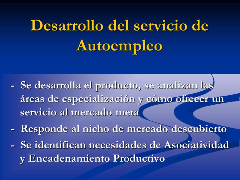 Desarrollo del servicio de Autoempleo - Se desarrolla el producto, se analizan las áreas de especialización y cómo ofrecer un servicio al mercado meta