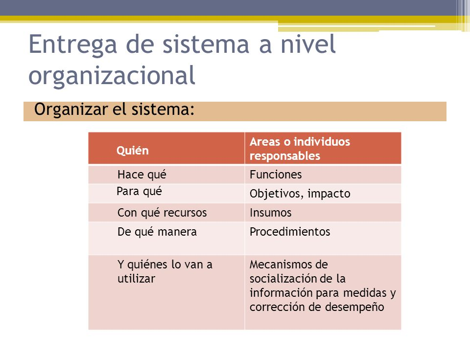 Entrega de sistema a nivel organizacional Organizar el sistema: Quién Areas o individuos responsables Hace quéFunciones Para qué Objetivos, impacto Co