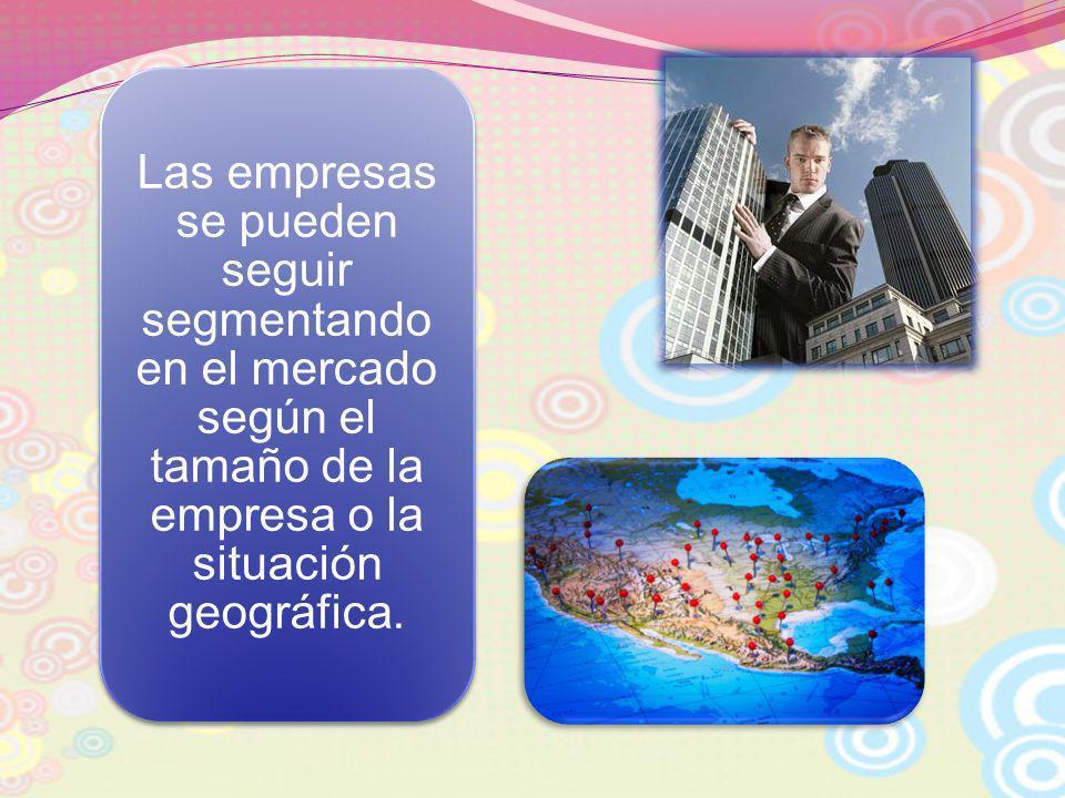 Las empresas se pueden seguir segmentando en el mercado según el tamaño de la empresa o la situación geográfica.