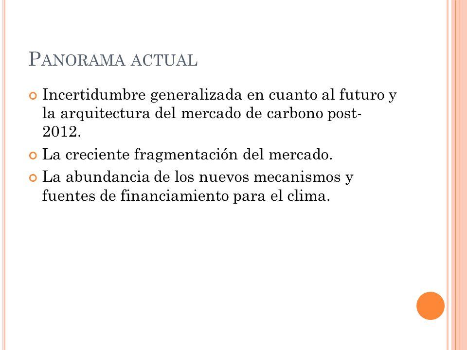 P ANORAMA ACTUAL Incertidumbre generalizada en cuanto al futuro y la arquitectura del mercado de carbono post- 2012. La creciente fragmentación del me