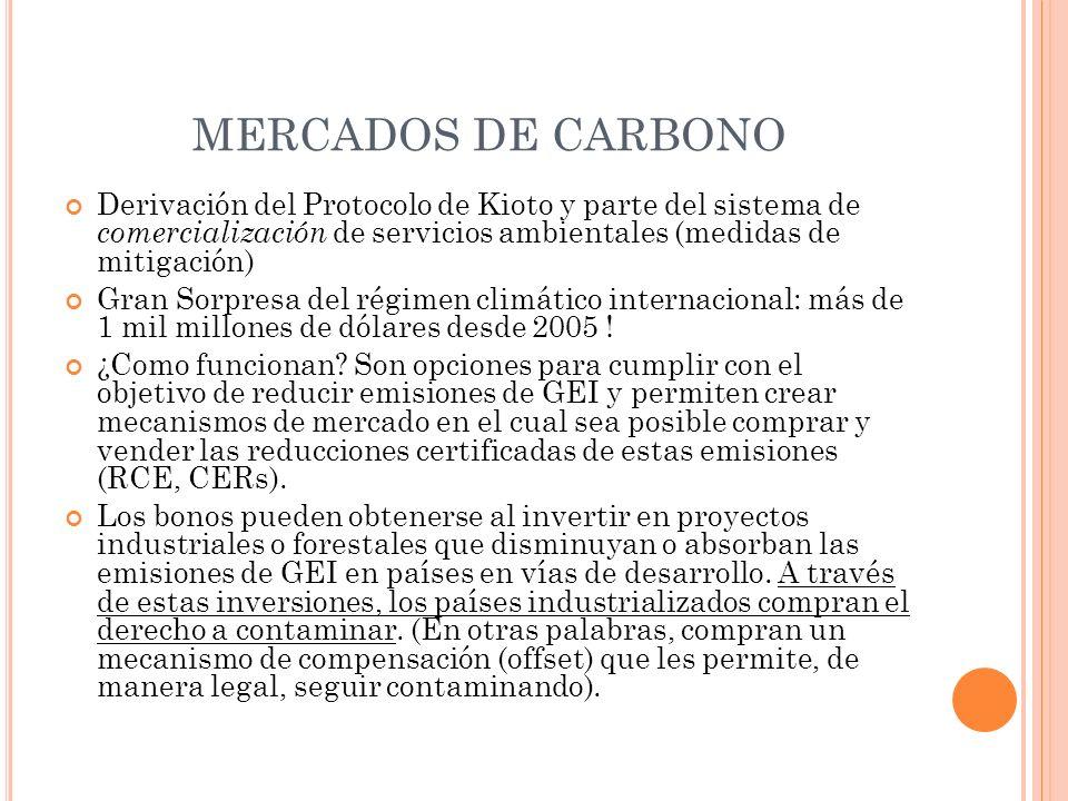 MERCADOS DE CARBONO Derivación del Protocolo de Kioto y parte del sistema de comercialización de servicios ambientales (medidas de mitigación) Gran So