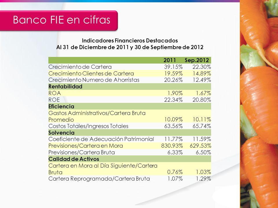 Indicadores Financieros Destacados Al 31 de Diciembre de 2011 y 30 de Septiembre de 2012 2011Sep.2012 Crecimiento de Cartera39.15%22.30% Crecimiento C