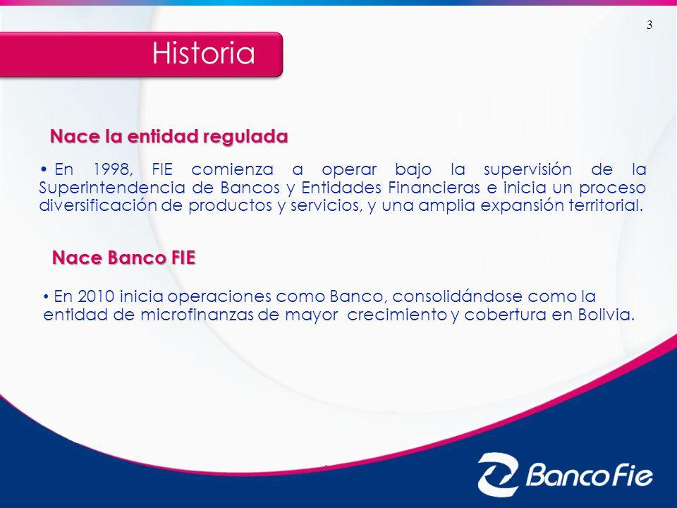 En 1998, FIE comienza a operar bajo la supervisión de la Superintendencia de Bancos y Entidades Financieras e inicia un proceso diversificación de pro