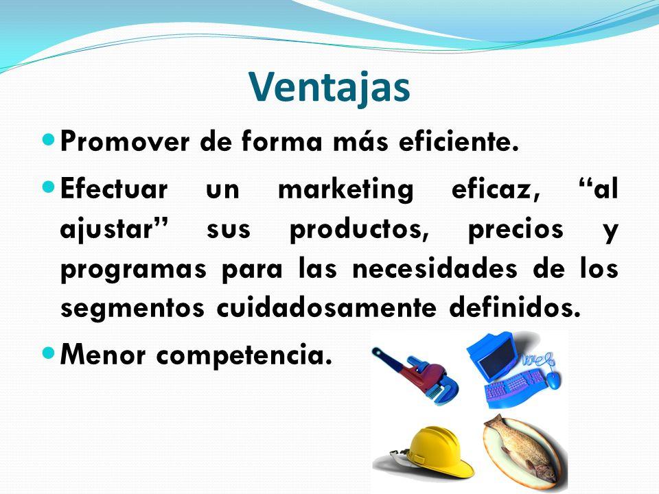 Ventajas Promover de forma más eficiente. Efectuar un marketing eficaz, al ajustar sus productos, precios y programas para las necesidades de los segm