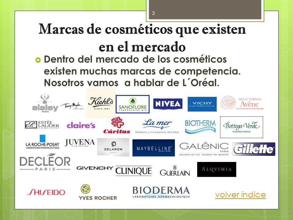 Marcas de cosméticos que existen en el mercado Dentro del mercado de los cosméticos existen muchas marcas de competencia. Nosotros vamos a hablar de L