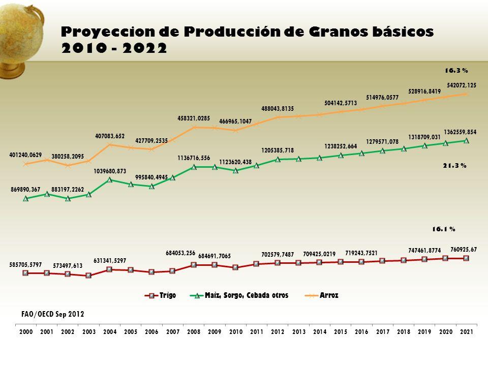 Proyeccion de Producción de Granos básicos 2010 - 2022 16.3 % FAO/OECD Sep 2012