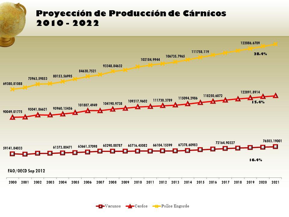 Proyección de Producción de Cárnicos 2010 - 2022 FAO/OECD Sep 2012