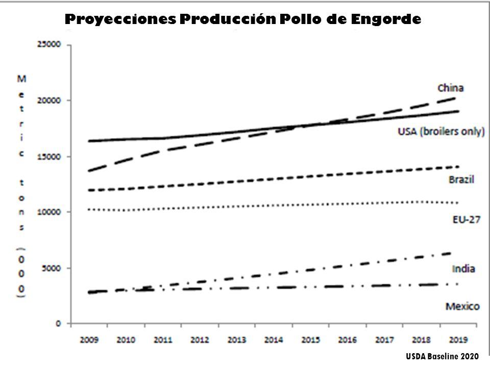Proyecciones Producción Pollo de Engorde USDA Baseline 2020