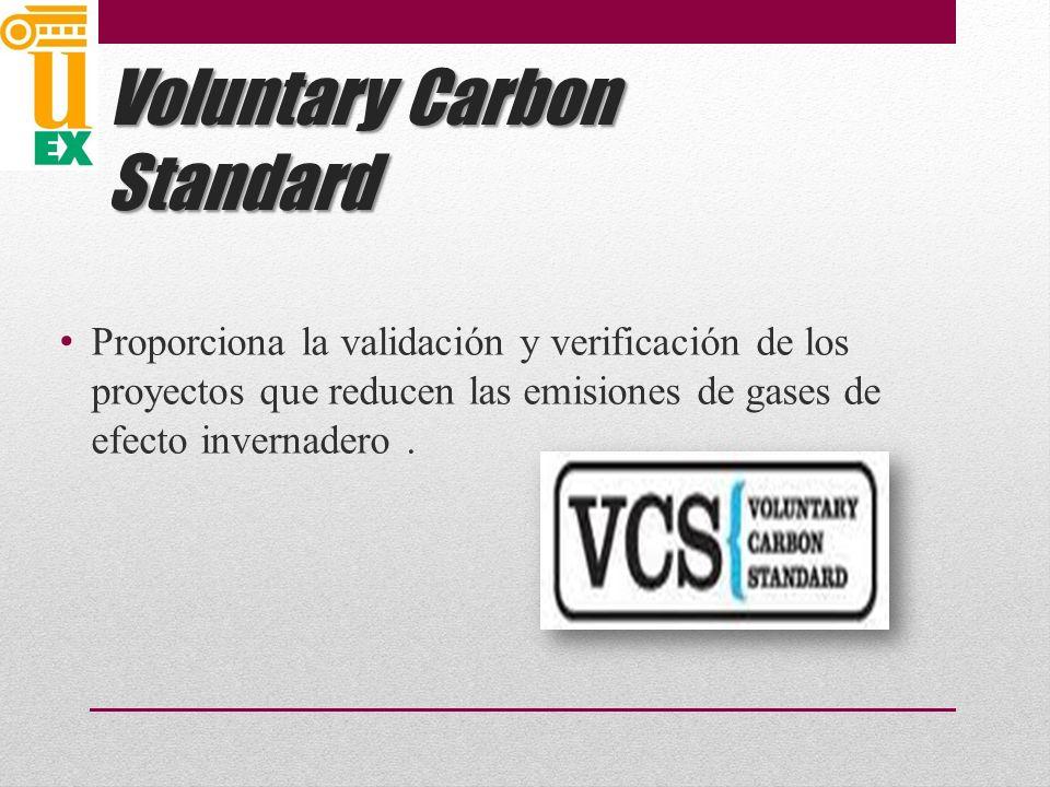 Voluntary Carbon Standard Proporciona la validación y verificación de los proyectos que reducen las emisiones de gases de efecto invernadero.