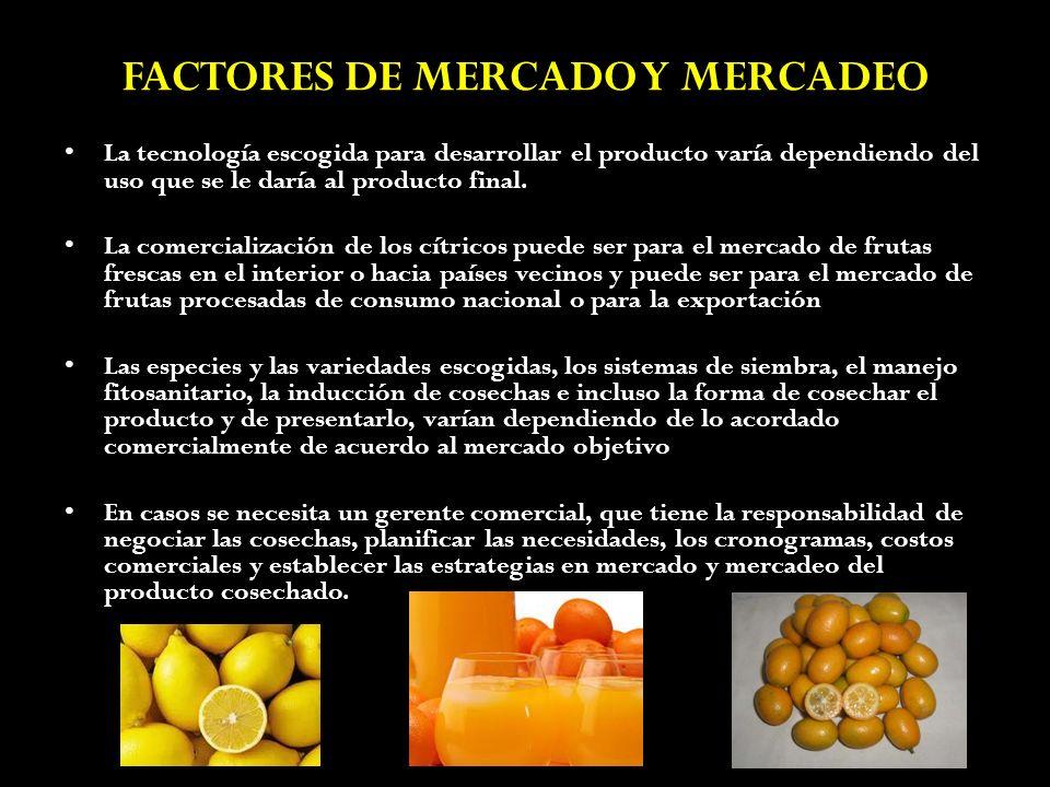FACTORES DE MERCADO Y MERCADEO La tecnología escogida para desarrollar el producto varía dependiendo del uso que se le daría al producto final. La com