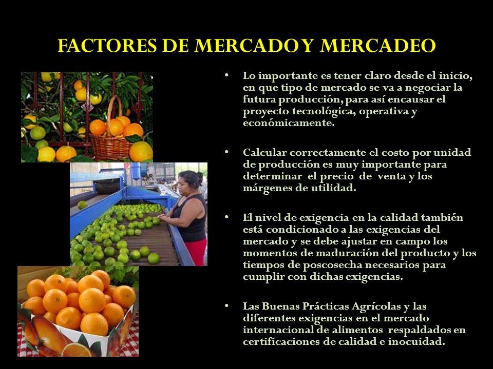 FACTORES DE MERCADO Y MERCADEO Lo importante es tener claro desde el inicio, en que tipo de mercado se va a negociar la futura producción, para así en