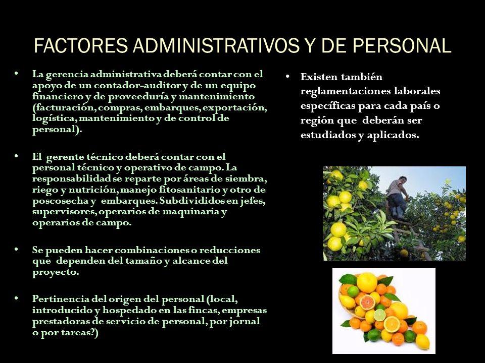 FACTORES ADMINISTRATIVOS Y DE PERSONAL La gerencia administrativa deberá contar con el apoyo de un contador-auditor y de un equipo financiero y de pro
