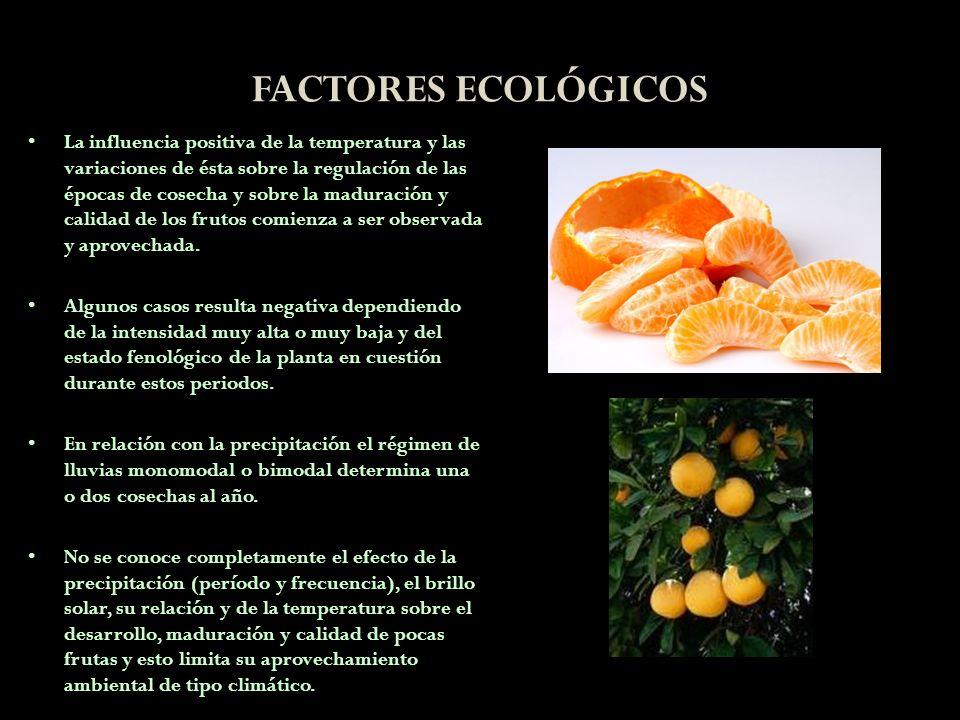 FACTORES ECOLÓGICOS La influencia positiva de la temperatura y las variaciones de ésta sobre la regulación de las épocas de cosecha y sobre la madurac