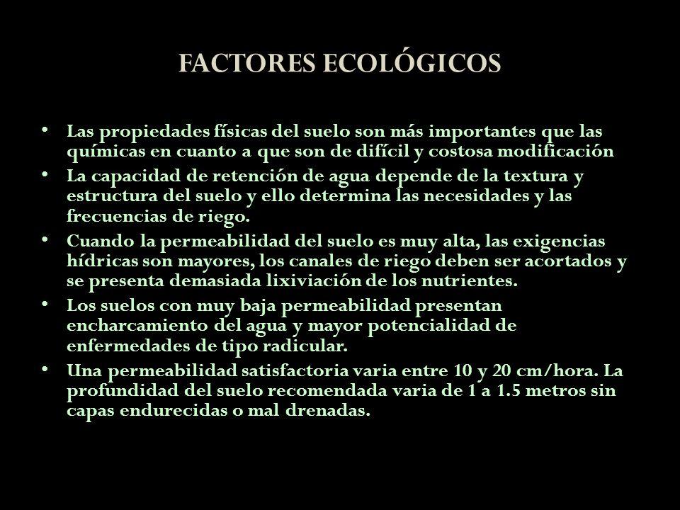 FACTORES ECOLÓGICOS Las propiedades físicas del suelo son más importantes que las químicas en cuanto a que son de difícil y costosa modificación La ca