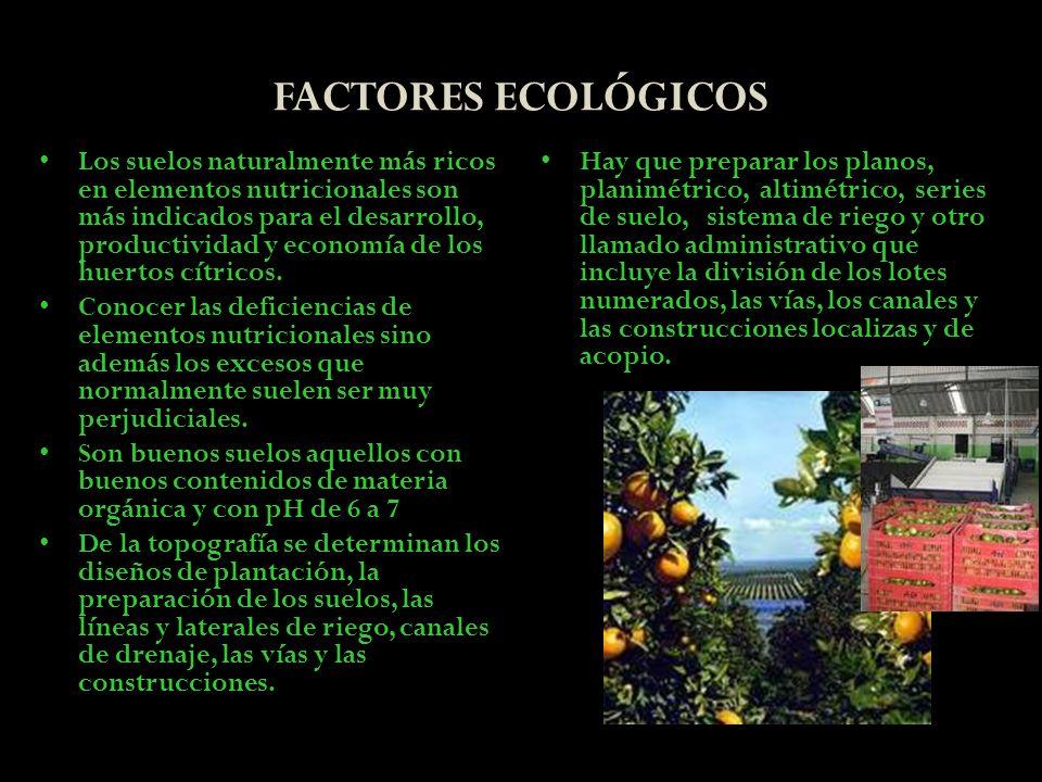 FACTORES ECOLÓGICOS Los suelos naturalmente más ricos en elementos nutricionales son más indicados para el desarrollo, productividad y economía de los