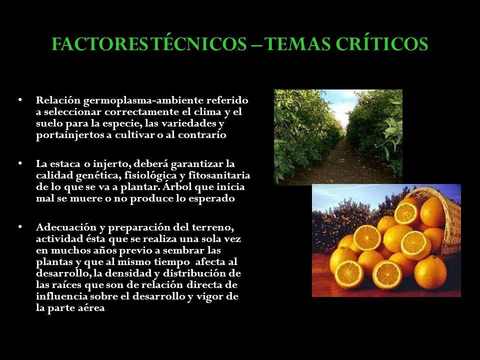 FACTORES TÉCNICOS – TEMAS CRÍTICOS Relación germoplasma-ambiente referido a seleccionar correctamente el clima y el suelo para la especie, las varieda