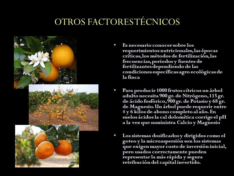 OTROS FACTORES TÉCNICOS Es necesario conocer sobre los requerimientos nutricionales, las épocas críticas, los métodos de fertilización, las frecuencia