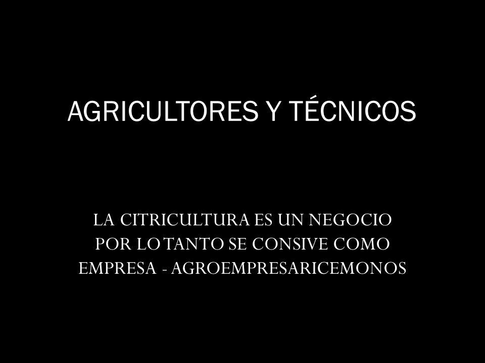 AGRICULTORES Y TÉCNICOS LA CITRICULTURA ES UN NEGOCIO POR LO TANTO SE CONSIVE COMO EMPRESA - AGROEMPRESARICEMONOS