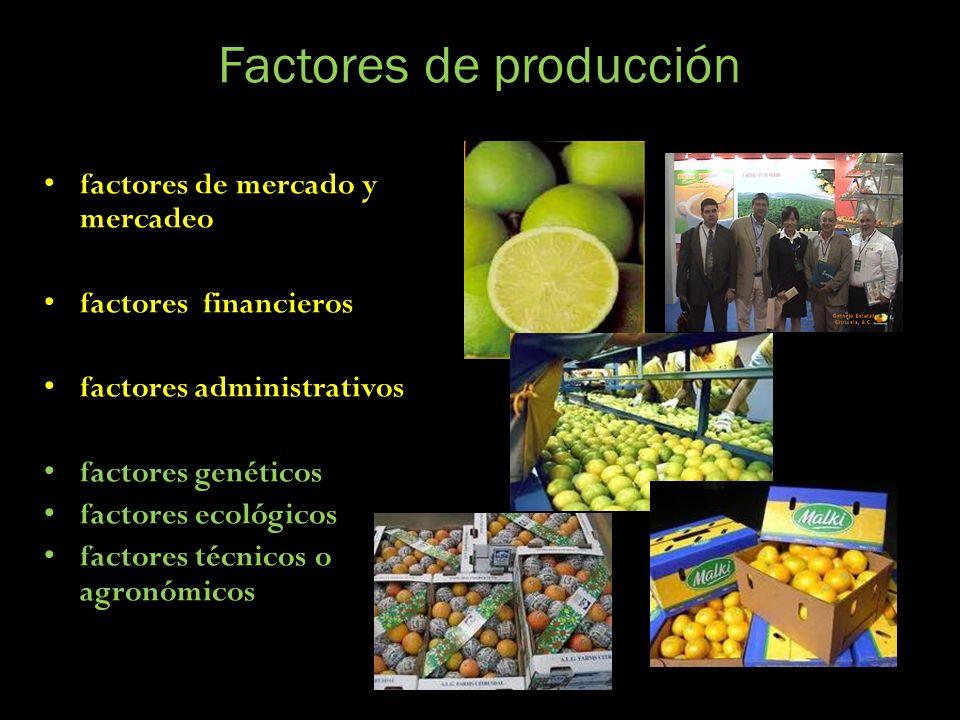 Factores de producción factores de mercado y mercadeo factores financieros factores administrativos factores genéticos factores ecológicos factores té