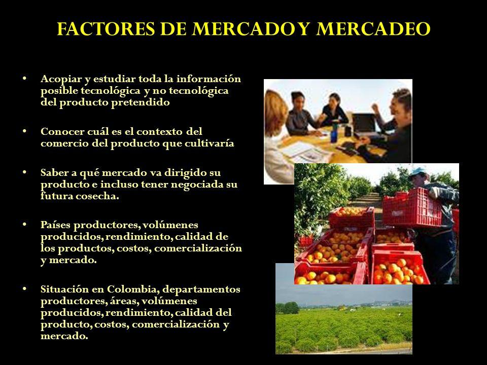 FACTORES DE MERCADO Y MERCADEO Acopiar y estudiar toda la información posible tecnológica y no tecnológica del producto pretendido Conocer cuál es el