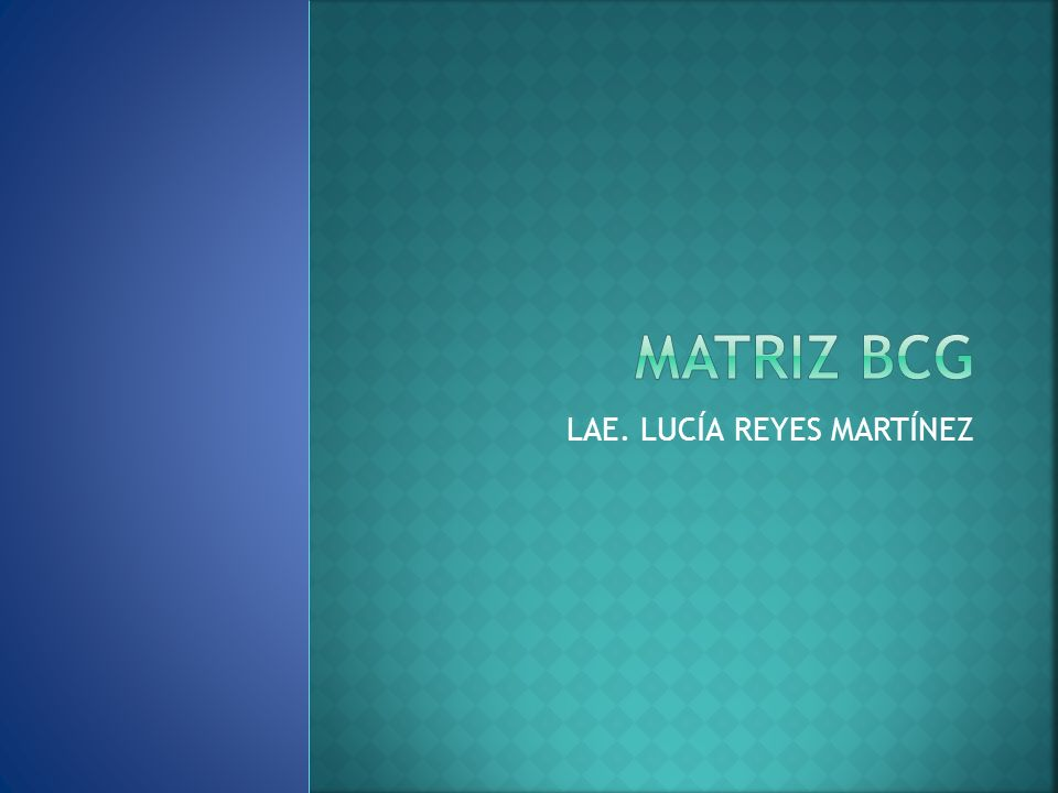 LAE. LUCÍA REYES MARTÍNEZ