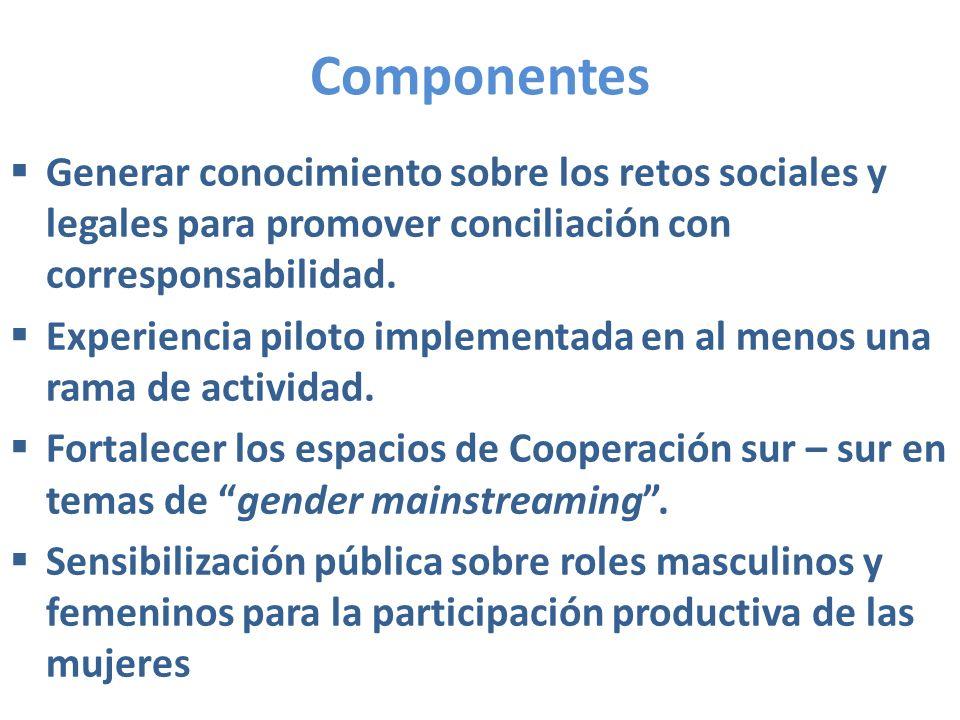 Componentes Generar conocimiento sobre los retos sociales y legales para promover conciliación con corresponsabilidad. Experiencia piloto implementada