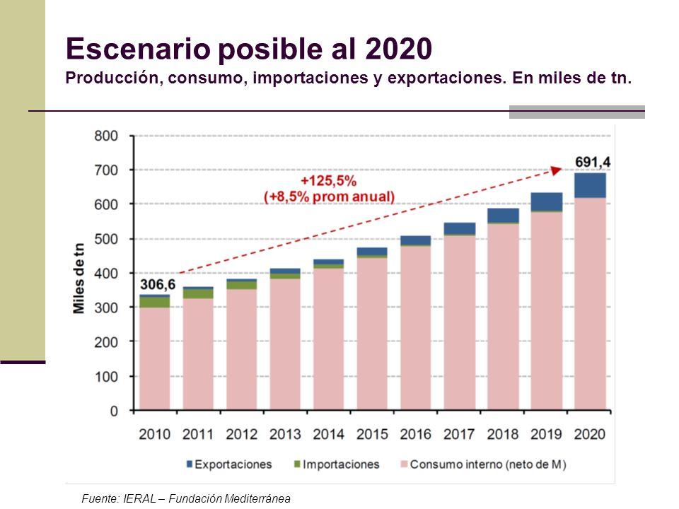 Escenario posible al 2020 Producción, consumo, importaciones y exportaciones. En miles de tn. Fuente: IERAL – Fundación Mediterránea