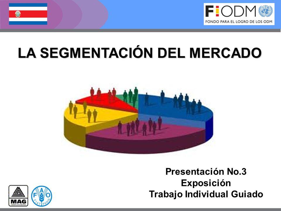 LA SEGMENTACIÓN DEL MERCADO Presentación No.3 Exposición Trabajo Individual Guiado