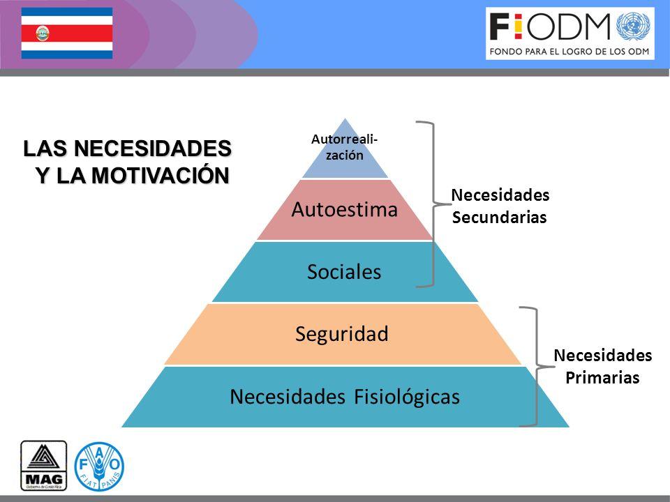 LAS NECESIDADES Y LA MOTIVACIÓN Necesidades Primarias Necesidades Secundarias
