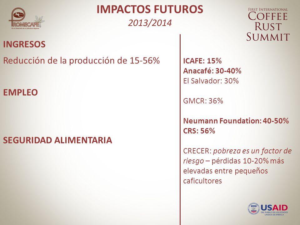 INGRESOS EMPLEO SEGURIDAD ALIMENTARIA IMPACTOS FUTUROS 2013/2014 Reducción de la producción de 15-56% ICAFE: 15% Anacafé: 30-40% El Salvador: 30% GMCR: 36% Neumann Foundation: 40-50% CRS: 56% CRECER: pobreza es un factor de riesgo – pérdidas 10-20% más elevadas entre pequeños caficultores