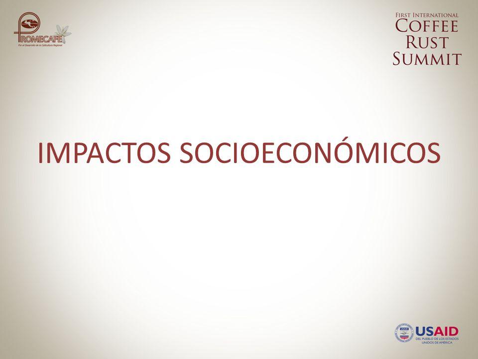 IMPACTOS SOCIOECONÓMICOS
