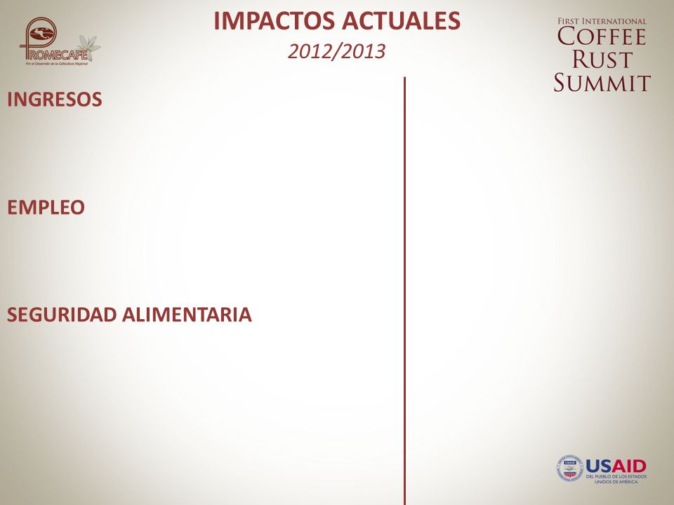 IMPACTOS ACTUALES 2012/2013 INGRESOS EMPLEO SEGURIDAD ALIMENTARIA Reducción de la producción entre 5-40% ICAFE: 5% Anacafé: 15% El Salvador: 21% Honduras: 21% PROMECAFE: 20% Sustainable Harvest: 30-40% GMCR: 32% Neumann Foundation: 30-40% CRS: 31%