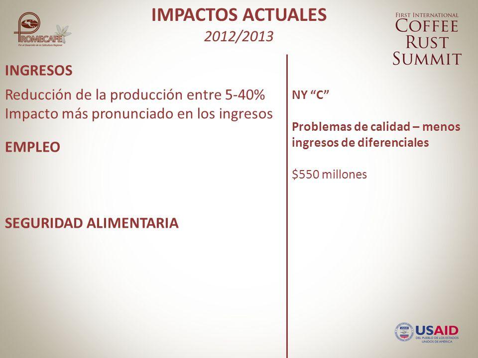 INGRESOS EMPLEO SEGURIDAD ALIMENTARIA Reducción de la producción entre 5-40% Impacto más pronunciado en los ingresos NY C Problemas de calidad – menos ingresos de diferenciales $550 millones IMPACTOS ACTUALES 2012/2013