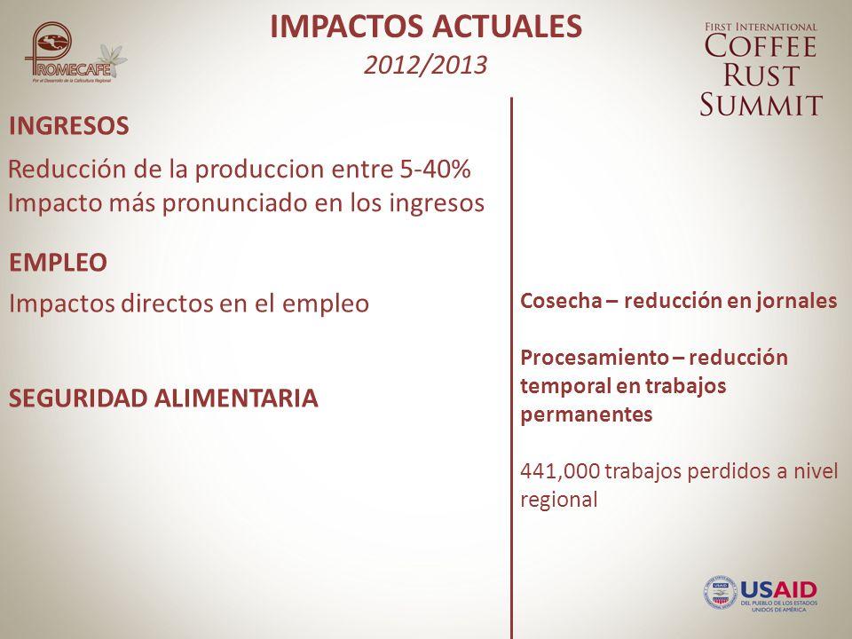 INGRESOS EMPLEO SEGURIDAD ALIMENTARIA ORDEN PÚBLICO Reducción de la producción de 15-56% ¿El mercado.