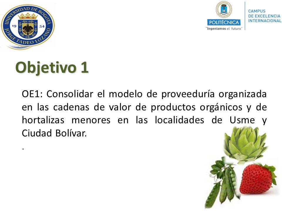 OE1: Consolidar el modelo de proveeduría organizada en las cadenas de valor de productos orgánicos y de hortalizas menores en las localidades de Usme