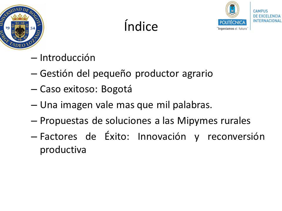 Índice – Introducción – Gestión del pequeño productor agrario – Caso exitoso: Bogotá – Una imagen vale mas que mil palabras. – Propuestas de solucione