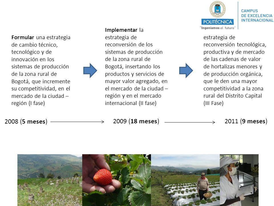 Formular una estrategia de cambio técnico, tecnológico y de innovación en los sistemas de producción de la zona rural de Bogotá, que incremente su com