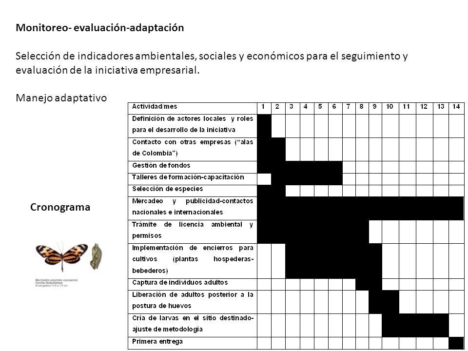 Monitoreo- evaluación-adaptación Selección de indicadores ambientales, sociales y económicos para el seguimiento y evaluación de la iniciativa empresa