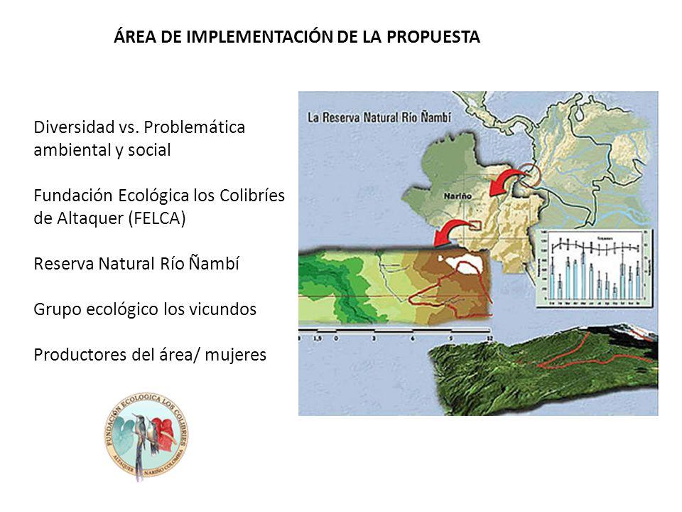Diversidad vs. Problemática ambiental y social Fundación Ecológica los Colibríes de Altaquer (FELCA) Reserva Natural Río Ñambí Grupo ecológico los vic