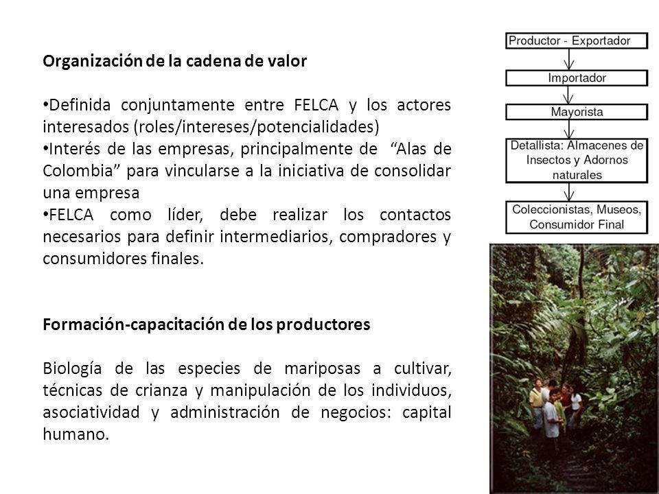 Organización de la cadena de valor Definida conjuntamente entre FELCA y los actores interesados (roles/intereses/potencialidades) Interés de las empre