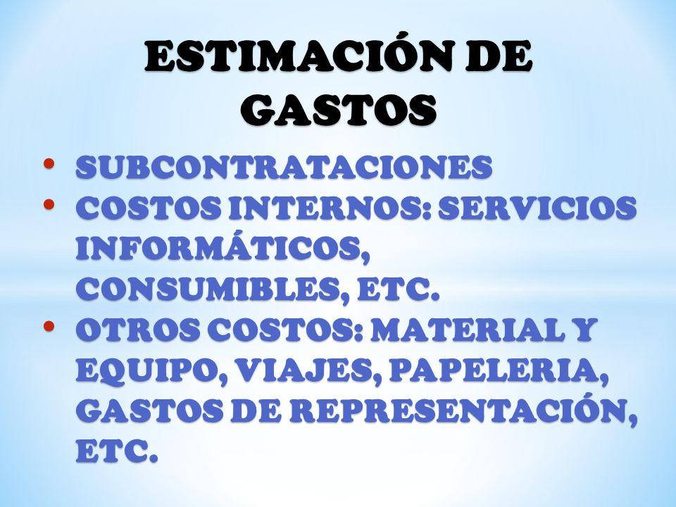 ESTIMACIÓN DE GASTOS SUBCONTRATACIONES SUBCONTRATACIONES COSTOS INTERNOS: SERVICIOS INFORMÁTICOS, CONSUMIBLES, ETC. COSTOS INTERNOS: SERVICIOS INFORMÁ