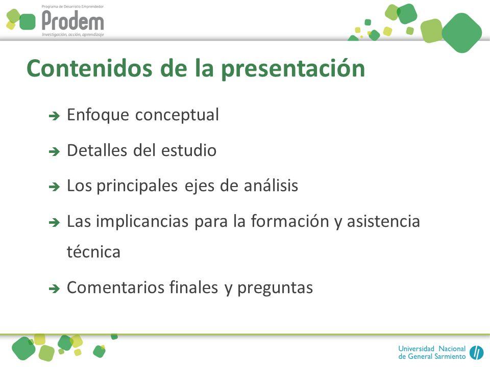 Contenidos de la presentación Enfoque conceptual Detalles del estudio Los principales ejes de análisis Las implicancias para la formación y asistencia